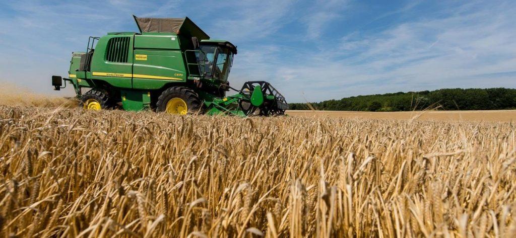 Campagne agricole: la récolte céréalière ne dépassera pas les 61 millions de quintaux.