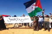 La presse italienne épingle l'Algérie pour les violations des droits de l'Homme dans les camps de Tindouf