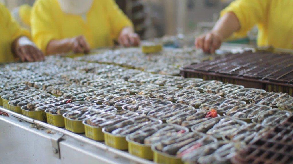 Boulettes de sardine impropres à la consommation. Les explications de l'ONSSA