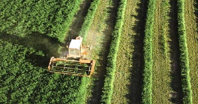 Exposition à Pékin des opportunités d'investissement dans le secteur agricole au Maroc