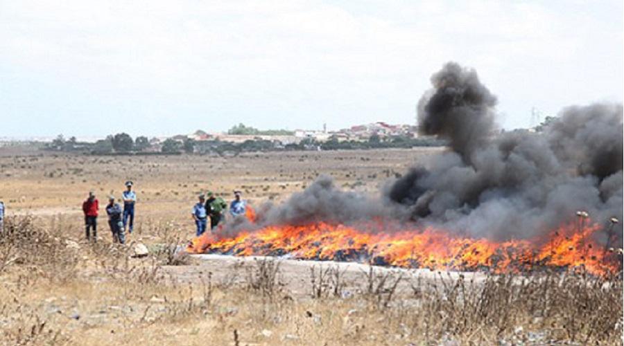 Plus de 12 tonnes de drogue incinérées dans la ville de Laayoune