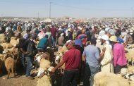 Les autorités ferment sept souks de bétail pour non respect des mesures sanitaires