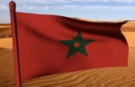 Un journal tanzanien salue la gestion clairvoyante de SM le Roi du dossier du Sahara marocain