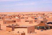 Mouvement alternatif au Polisario, le Mouvement Sahraoui pour la paix (MSP) mise sur une solution au conflit fomenté autour du Sahara marocain