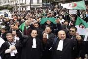 Algérie : Les avocats du barreau d'Alger en grève pour une justice indépendante