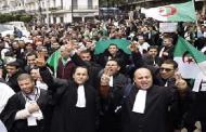 Violation des droits de la défense en Algérie : Grogne des robes noires