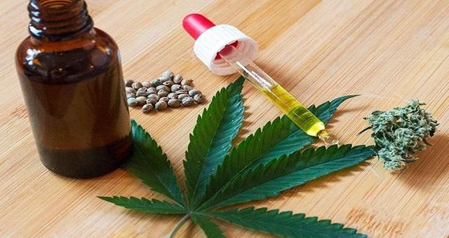 Usages licites du cannabis: l'agriculteur, grand gagnant selon une étude du ministère de l'Intérieur