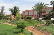 L'Institut français de Marrakech lance sa « Galerie à l'air libre »