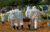 OMS: Le monde face à l'augmentation des cas de Coronaviruspour la 7 èmesemaine consécutive